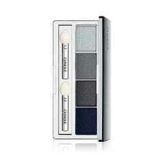 ALL ABOUT SHADOW QUAD-Clinique